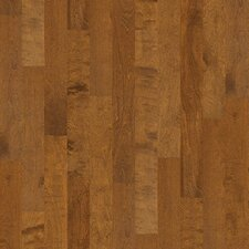 "Brooksville 5"" Engineered Birch Hardwood Flooring in Surfside"