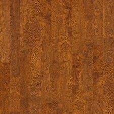 "Brooksville 5"" Engineered Birch Hardwood Flooring in Burnside"