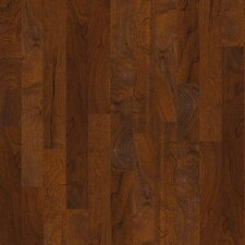 "Venetian Way 5"" Engineered Kupay Hardwood Flooring in Lavaredo"