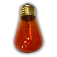 11W Incandescent Light Bulb (Set of 12)