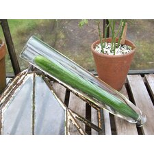 Cucumber Straightener Glass