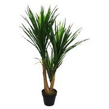 Kunstpflanze Nolina Recurvata
