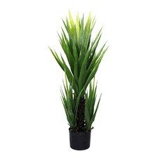 Artificial Yukka Plant