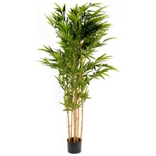 Artificial BambooTree in Pot