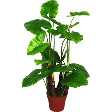 Artificial Taro Plant