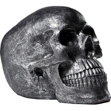 Skull Head Decorative Object