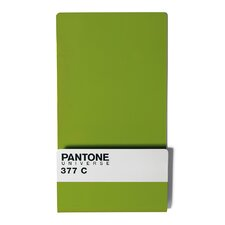 Pantone® 377 Wallstore with 6 Mini Magnets