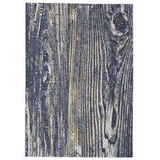 Cambrian Gray Area Rug