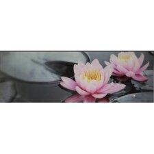 Glasbild Wasserrose - 33 x 95 cm