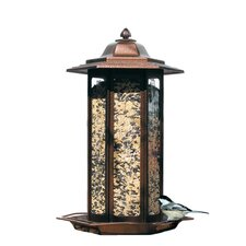 Tall Tulip Garden Bird Feeder