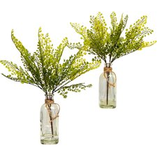 Faux Maidenhair Fern Desk Top Plant in Decorative Vase (Set of 2)