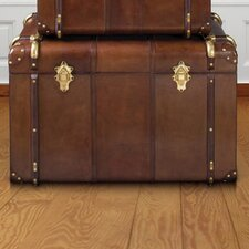 Havana Large Leather Travelling Trunk