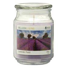 Duftkerze Soy Lavender Field