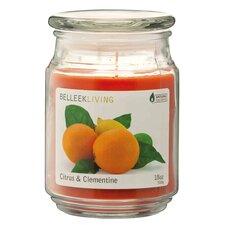 Duftkerze Soy Citrus and Clementine