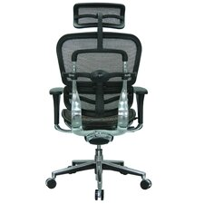 Ergohuman High-Back Mesh Managers Chair with Arms