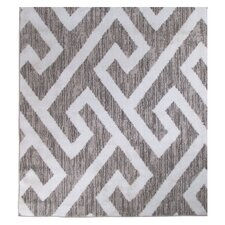 Gray & White Area Rug