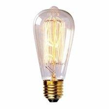 60W Vintage Incandescent Light Bulb