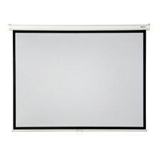 "High Contrast Grey 120"" diagonal Manual Projection Screen"