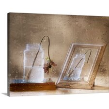 Reflection of Life by Delphine Devos Photographic Print on Canvas