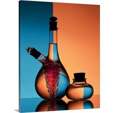 'Oil and Vinegar' by Aida Ianeva Graphic Art on Canvas