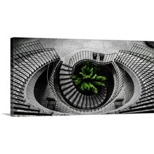 Go Green by Raveesh Ahuja Photographic Print on Canvas