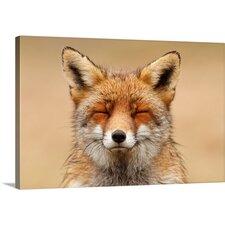 'Zen Fox' by Roeselien Raimond Photographic Print on Canvas
