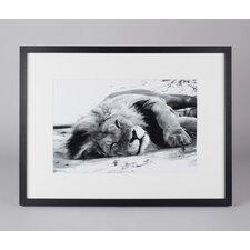 Gerahmtes Foto Löwe in der Savanne