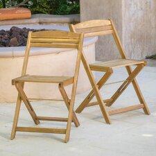 Lanai Folding Dining Side Chair (Set of 2)