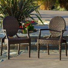 Giesel PE Wicker Outdoor Chair (Set of 2)