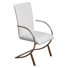 Justin Leather and Chrome Arm Chair (Set of 2)