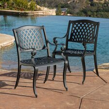 Grimm Cast Aluminum Outdoor Chair (Set of 2)