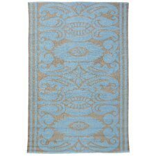 India Lead/Aqua Outdoor Area Rug