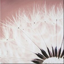 Delicate Dandelion with Glitter Photographic Print on Canvas