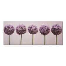 'Row Of Alliums' Photographic Print on Wrapped Canvas