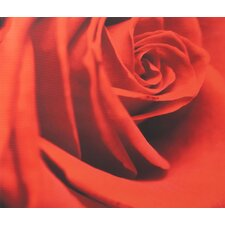 "Red Rose Printed Canvas Art - 24"" X 28"""