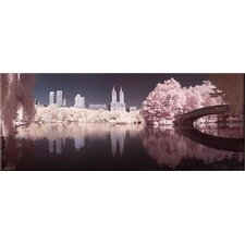 Central Park Photographic Print on Canvas