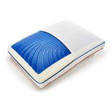 SeasonSense Pillow