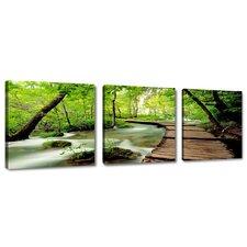 3-tlg. Leinwandbilder-Set Berth Nature, Fotodruck