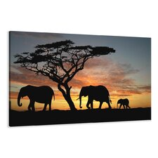 Leinwandbild African Elephants Fotodruck