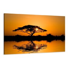 Leinwandbild Tree Sun Fotodruck