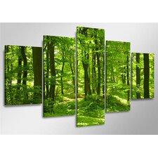 5-tlg. Leinwandbilder-Set Trees, Fotodruck