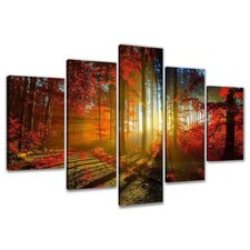 Trees Colorful Clearing 5 Piece Photographic Print Wrapped on Canvas Set