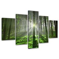 5-tlg. Leinwandbilder-Set Forest, Fotodruck