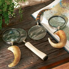 4-Piece Magnifying Lens Décor (Set of 4)