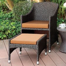 Decatur 2 Piece Wicker Arm Chair Set