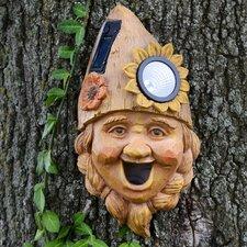 Solar Tree Face Ms Daisy Novelty Mounted Birdhouse (Set of 2)