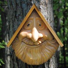 Novelty Mounted Birdhouse (Set of 2)
