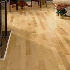 "3-1/4"" Solid Maple Hardwood Flooring in Country Natural"