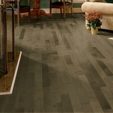 "3-1/4"" Solid Maple Hardwood Flooring in Pewter"