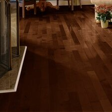 "3-1/4"" Solid Maple Hardwood Flooring in Cocoa Brown"